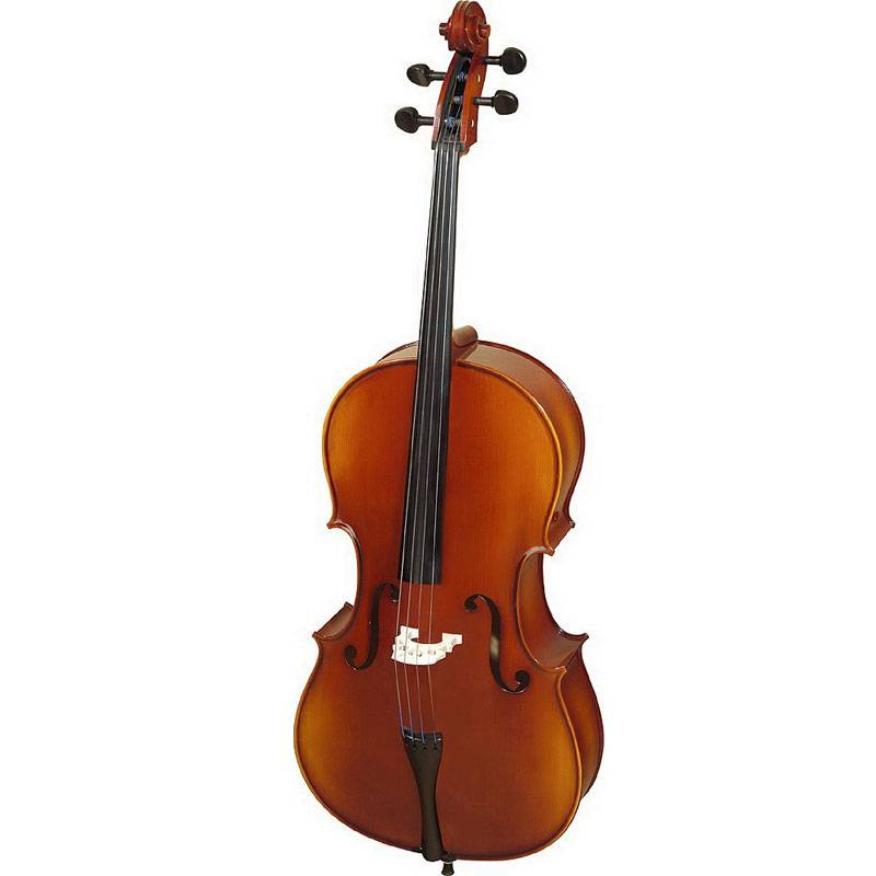 the history of the violoncello The violoncello, or as it is more commonly to refered to as the cello or 'cello (pronounced cheh-loh), is a stringed instrument and a member of the violin family the name 'cello is an abbreviation of the italian violoncello, which means little violone.